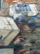 2016 Appletongate Mural (detail)